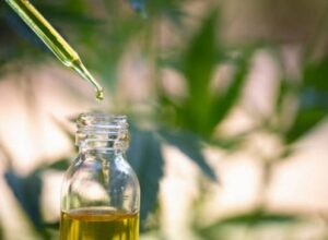 Where to buy 30% CBD Oil in Italy